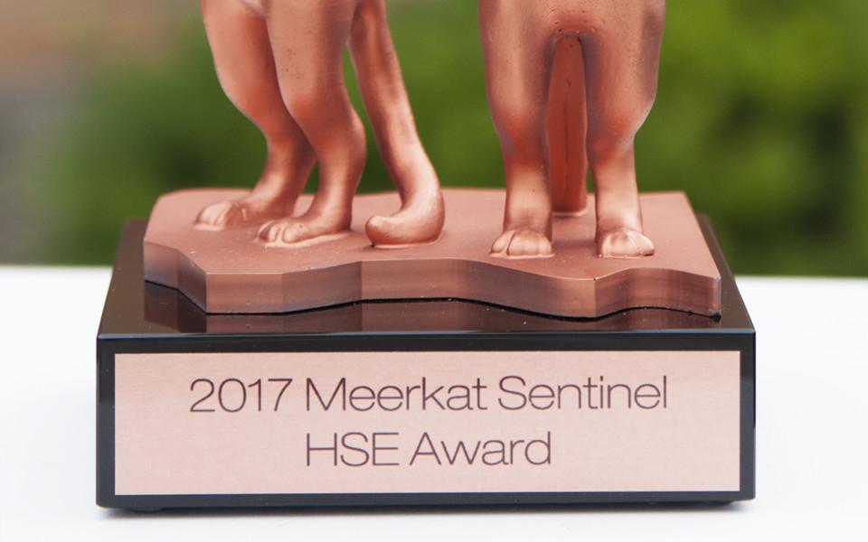 HSE Award